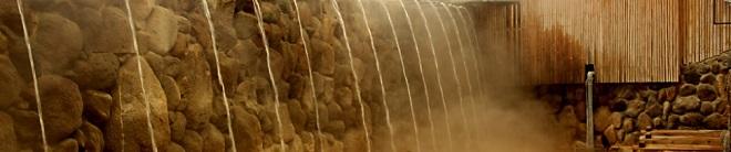 別府八湯のユニークな温泉も